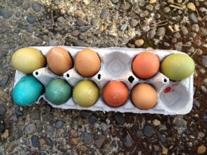 Easter 2013 egg decorating (w/niece + nephew)