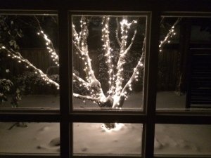 my favorite lit tree with snow